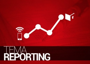 Tema reporting, auditoría y control