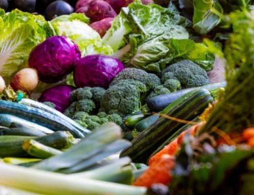 Vendedores alimentación en Palma de Mallorca